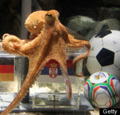 Paul the World Cup Octopus